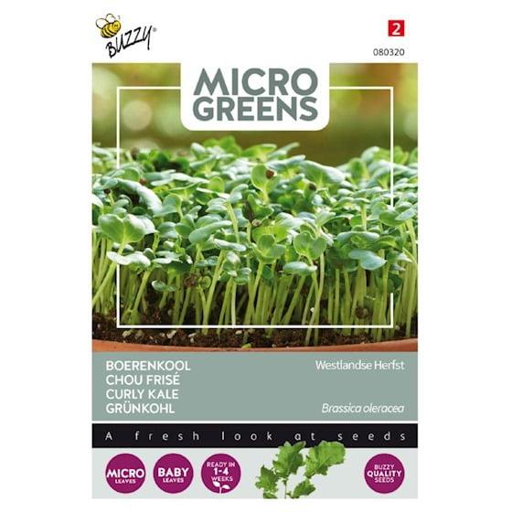 Boerenkool Micro Greens
