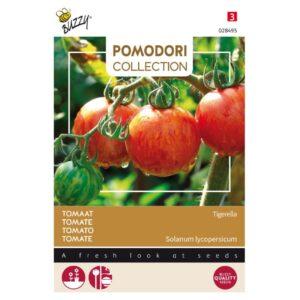 Tigerella tomaat