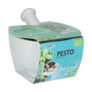 Vijzelset Pesto