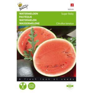 Watermeloen Sugar Baby